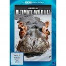 89110150 DVD ULTIMATE V9  WILDLIFE WÄLDER & AFRIKA