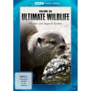 89110180 DVD ULTIMATE V3  WILDLIFE RÄUBER & JÄGER